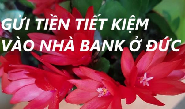 Ở ĐỨC CẦN BIẾT: HIỂU CÁCH GỬI TIỀN TIẾT KIỆM VÀO NHÀ BANK