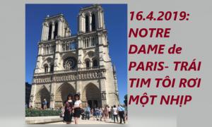 CUỐI NGÀY 16.4.2019: NOTRE DAME de PARIS- TRÁI TIM TÔI RƠI MỘT NHỊP