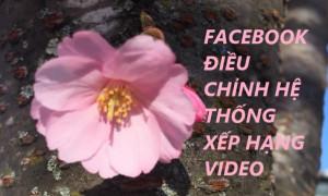 FACEBOOK ĐIỀU CHỈNH HỆ THỐNG XẾP HẠNG VIDEO