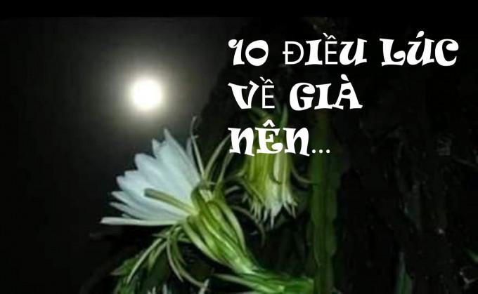 10 ĐIỀU LÚC VỀ GIÀ NÊN...
