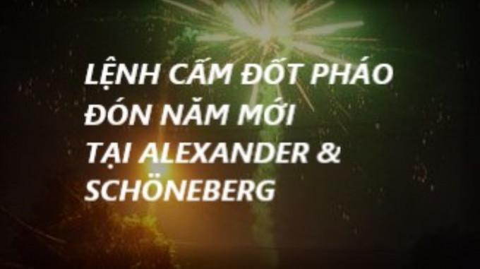LỆNH CẤM ĐỐT PHÁO ĐÓN NĂM MỚI TẠI ALEXANDER & SCHÖNEBERG