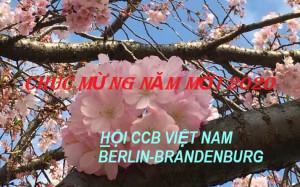 HỘI CỰU CHIẾN BINH VIỆT NAM TẠI BERLIN-BRANDENBURG CHÚC MỪNG NĂM MỚI 2020