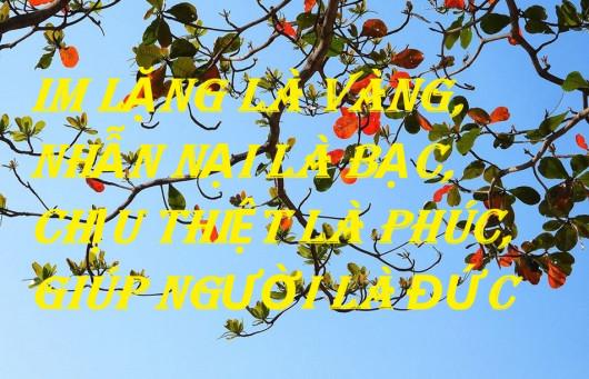IM LẶNG LÀ VÀNG, NHẪN NẠI LÀ BẠC, CHỊU THIỆT LÀ PHÚC, GIÚP NGƯỜI LÀ ĐỨC