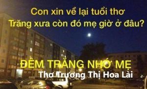 ĐÊM TRĂNG NHỚ MẸ - Trương Thị Hoa Lài, Rotstock