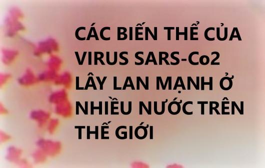 CÁC BIẾN THỂ CỦA VIRUS SARS-CoV-2 LÂY LAN MẠNH Ở NHIỀU NƯỚC TRÊN THẾ GIỚI