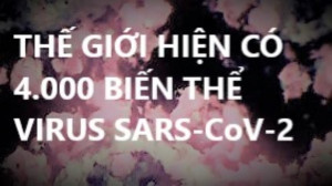 THẾ GIỚI HIỆN CÓ 4.000 BIẾN THỂ VIRUS SARS-CoV-2
